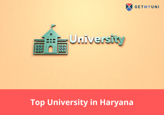 Top University in Haryana