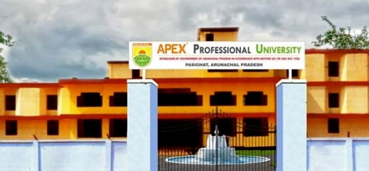 Apex mba eassy writing