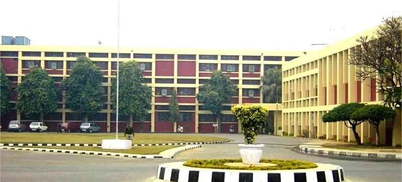 dav college chandigarh placements and companies visited