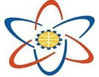 Baldev Ram Mirdha Institute of Technology, [BRMIT] Jaipur logo