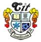 Central Institute of Technology, Raipur logo