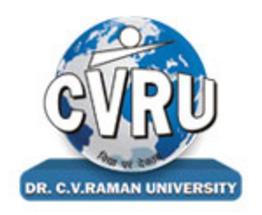Dr CV Raman College of Education, Bilaspur logo