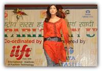 International Institute of Fashion Technology, [IIFT] Ranchi logo