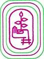 Smt KSN Kansagara College, Rajkot logo