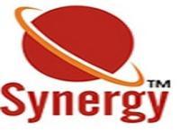 Synergy Institute of Management, [SIM] Pune logo